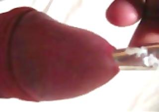 bylting pen pecker