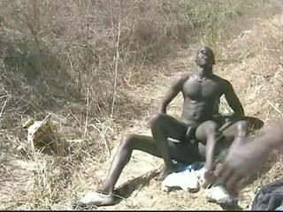 picnick blackpower