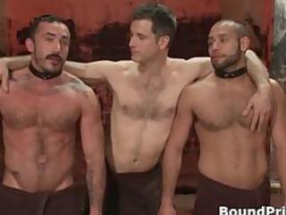 alessio and leo in lewd bizarre homo part10