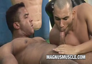 muscle dudes in gym