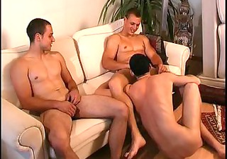lads anal drilling and sucking 3 by hammerbf part5